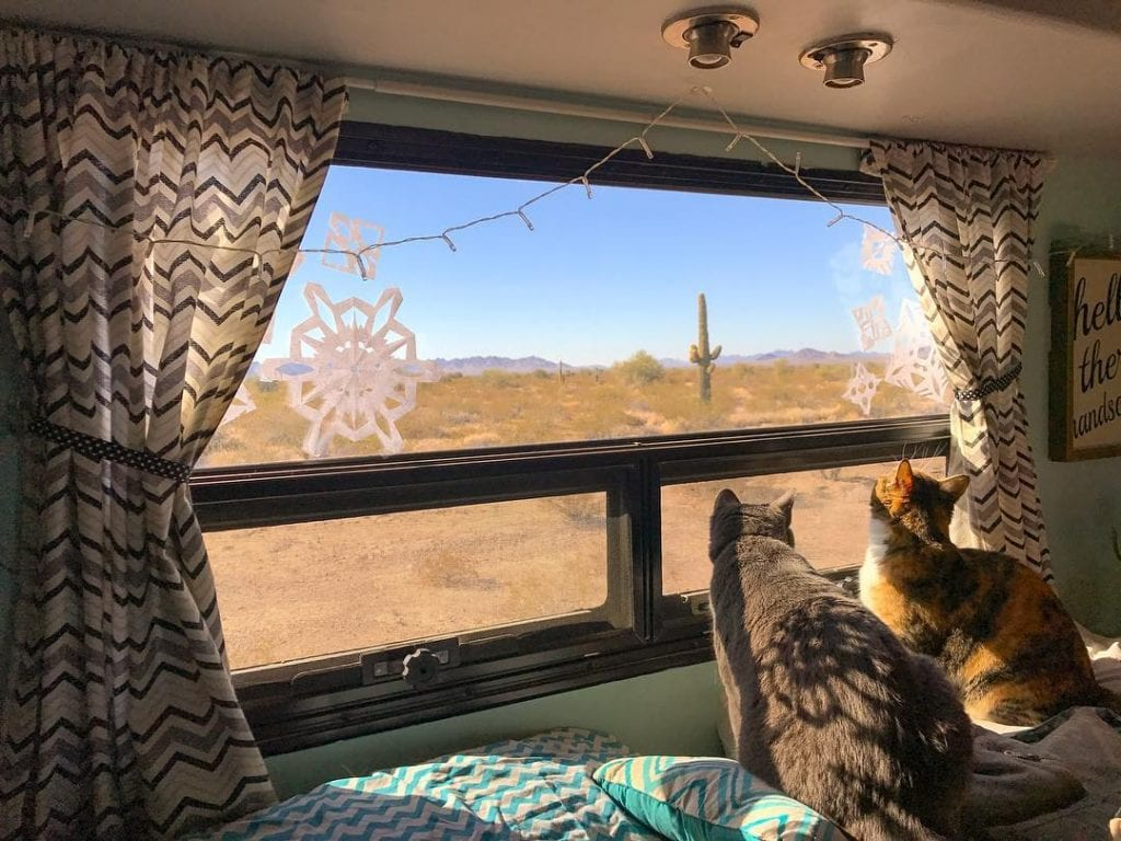 Desert views are Anna and Elsa's favorite part of RV life.