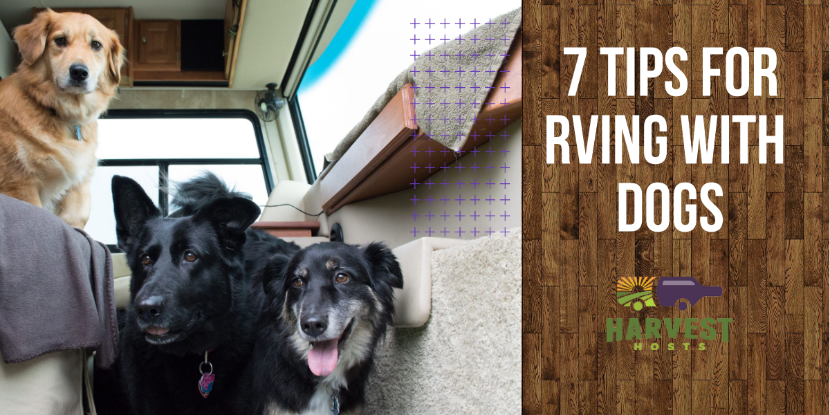 7 Tips For Rving With Dogs Unique Rv Camping With Harvest Hosts