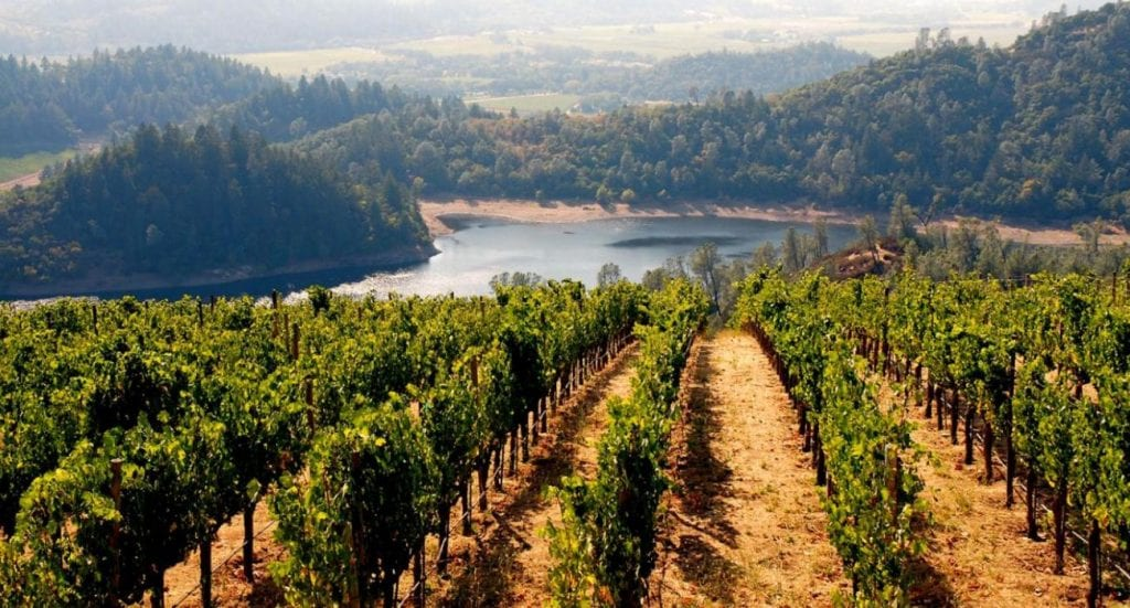 Wine country California is a magical place, full of gorgeous vistas, rolling green meadows, and numerous abundant lakes.