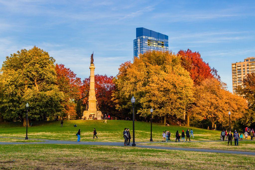 Boston Foliage