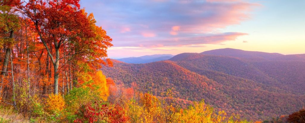 Skyline Drive in Virginia is one of the best places for fall foliage viewing in the country.
