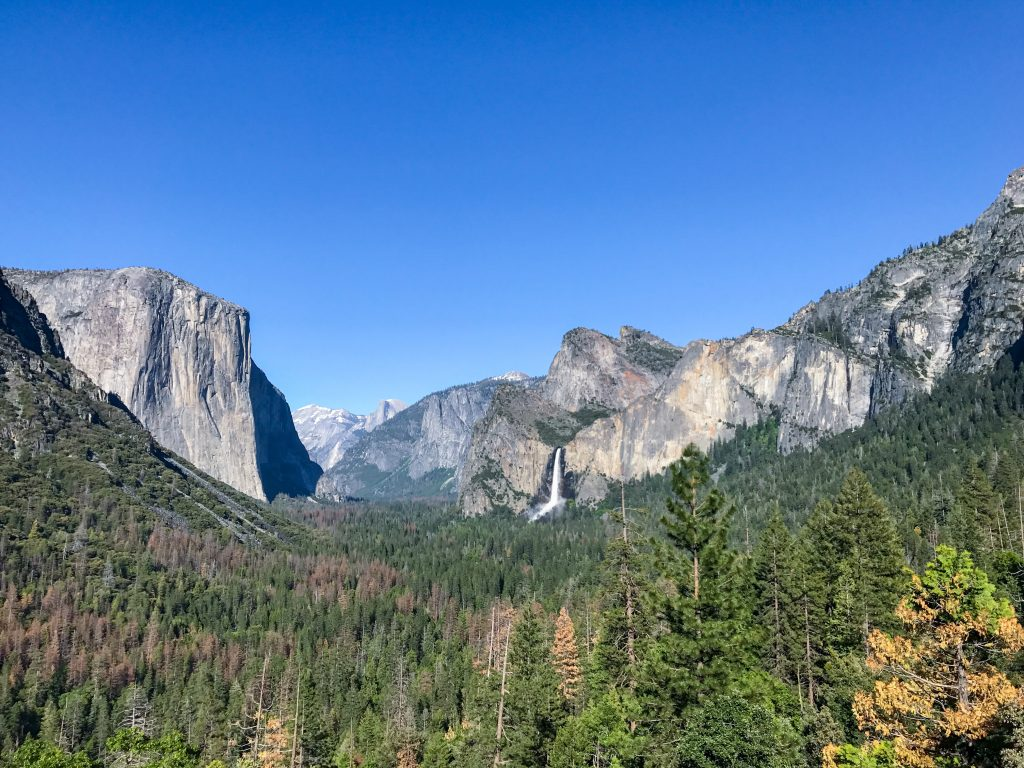Yosemite National Park is the crown jewel of the High Sierra.