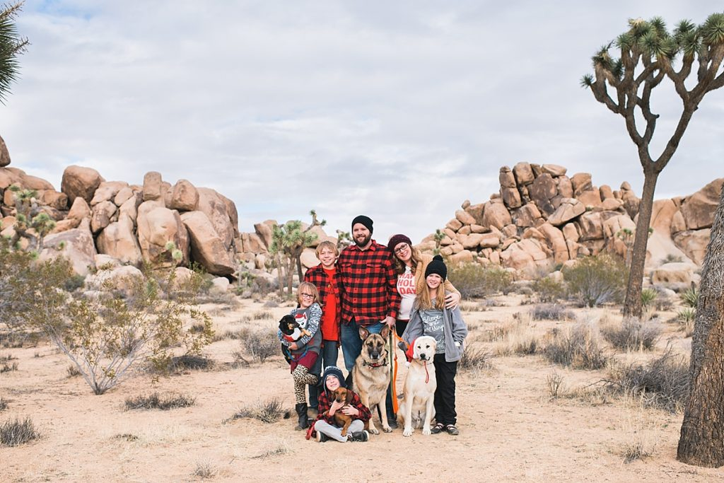 If you're up for it, take some Christmas family photos in the desert to commemorate the day.