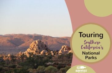 Touring Southern California's National Parks