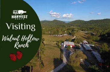 Visiting Walnut Hollow Ranch