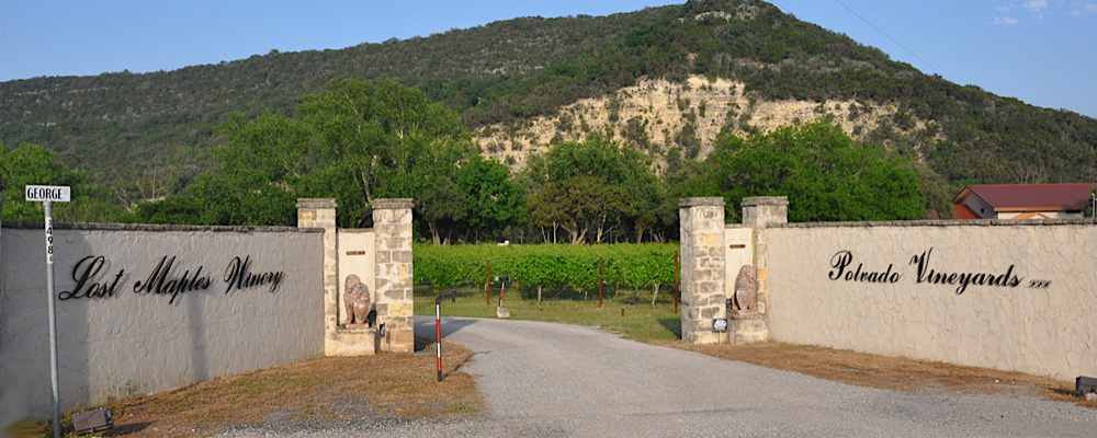 Winery entrance view
