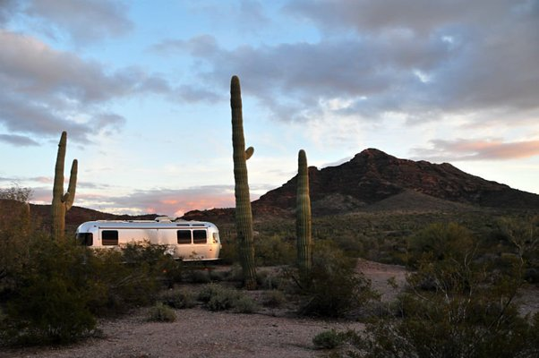 Organ Pipe Cactus National Monument has lots of great boondocking nearby.