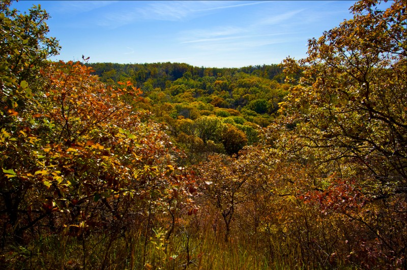 Fall foliage in Nebraska