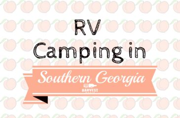 RV Camping in Southern Georgia