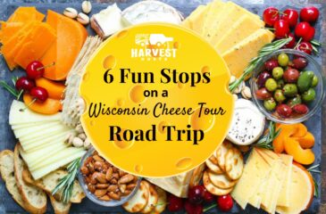 6 Fun Stops on a Wisconsin Cheese Tour Road Trip