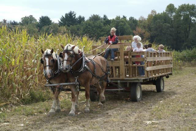 New York Harvest Hosts location