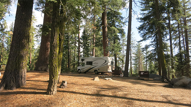 Sequoia National Park has plenty of campgrounds to choose from.