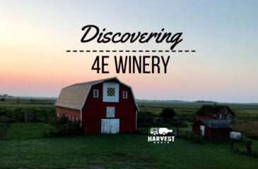 Discovering 4e Winery