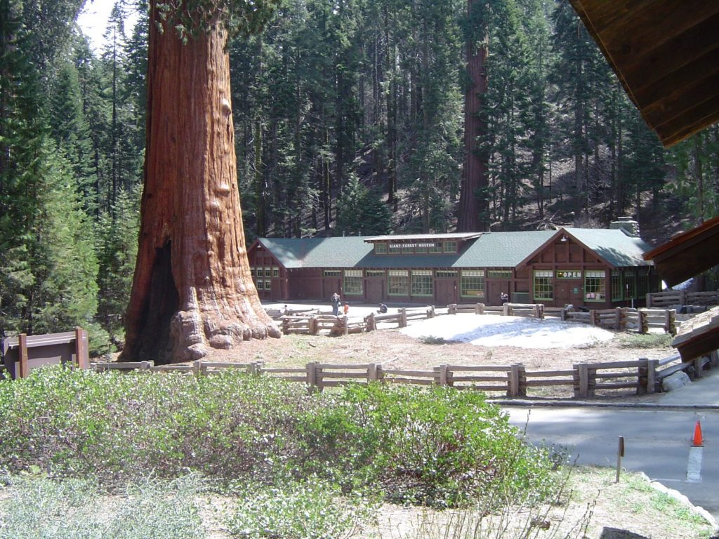 Be sure to stop at the Sequoia National Park Visitors Center.