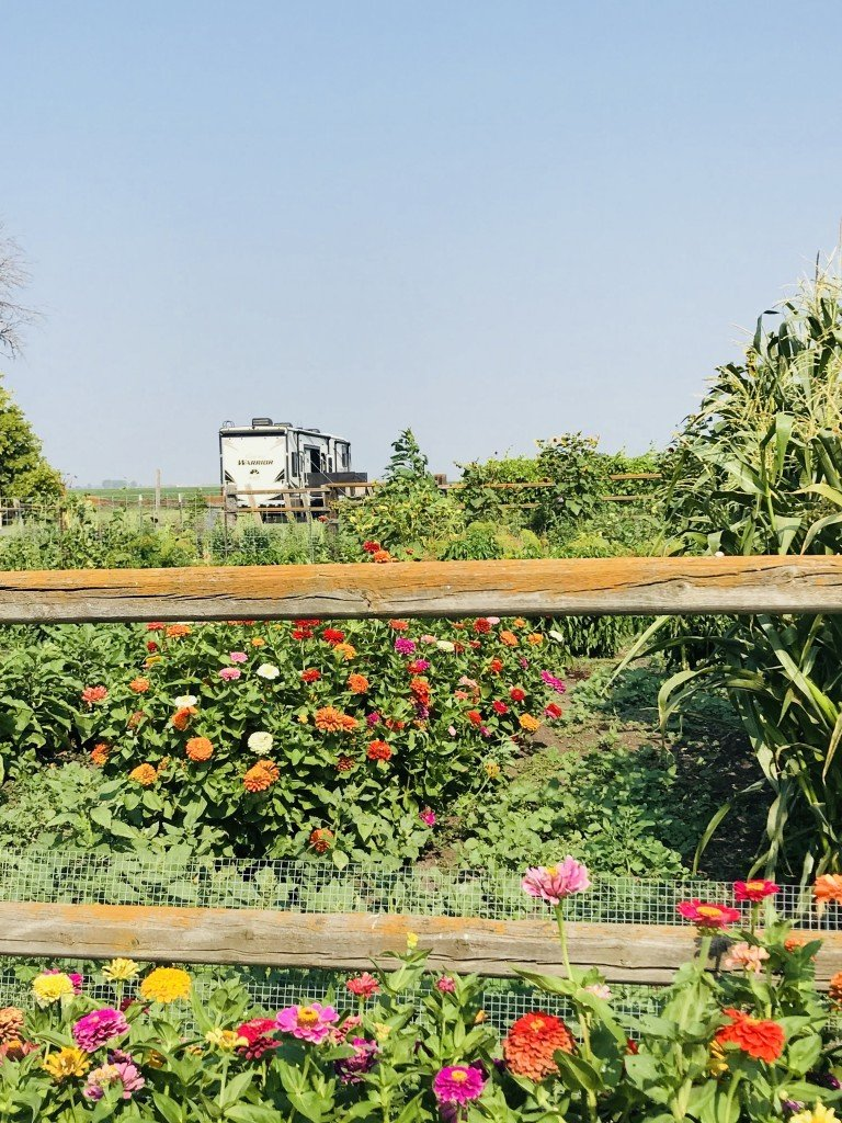 4e Winery allows guests to enjoy and meander through their gardens.
