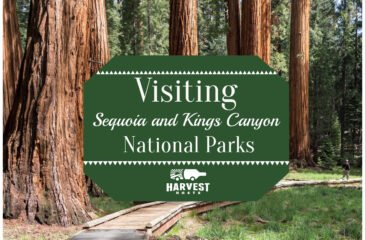 Visiting Sequoia and Kings Canyon National Parks in your RV