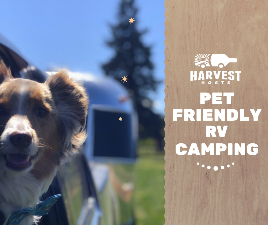 Pet Friendly RV Camping Header image