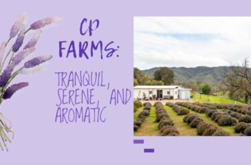 CP Farms: Tranquil, Serene, & Aromatic
