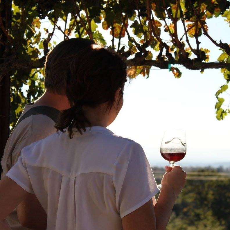 People from all over the country come to visit and enjoy wine at this gorgeous Manton vineyard.