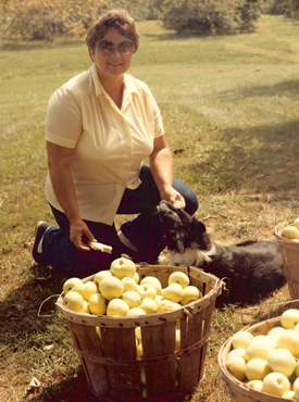 The Justus family has been growing apples for over 100 years.