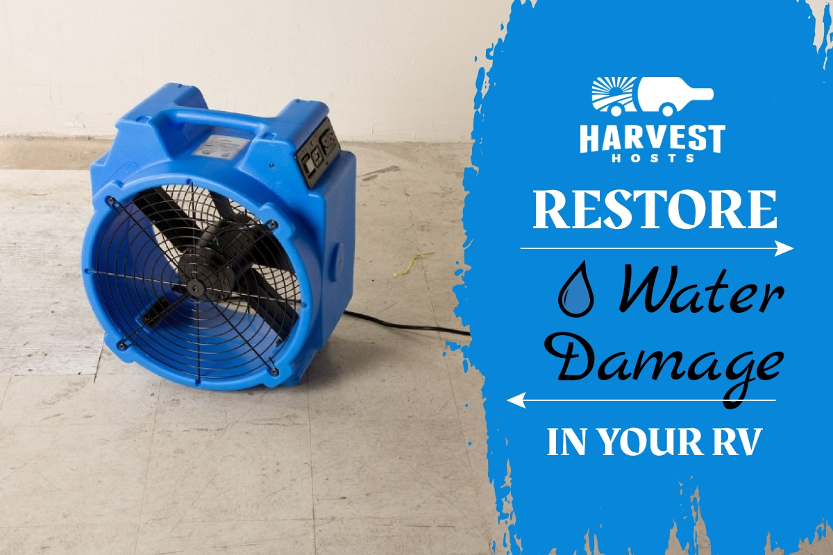 Restore water damage blog header