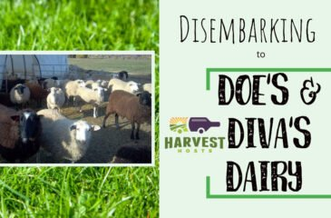 Disembarking to Doe's and Diva's Dairy