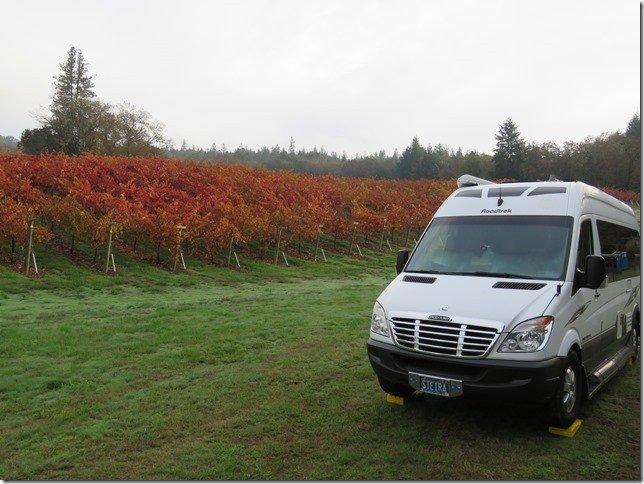 Delfino Vineyards and Winery is a beautiful vineyard in Roseburg, Oregon.
