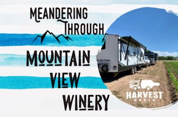 Meandering through Mountain View Winery