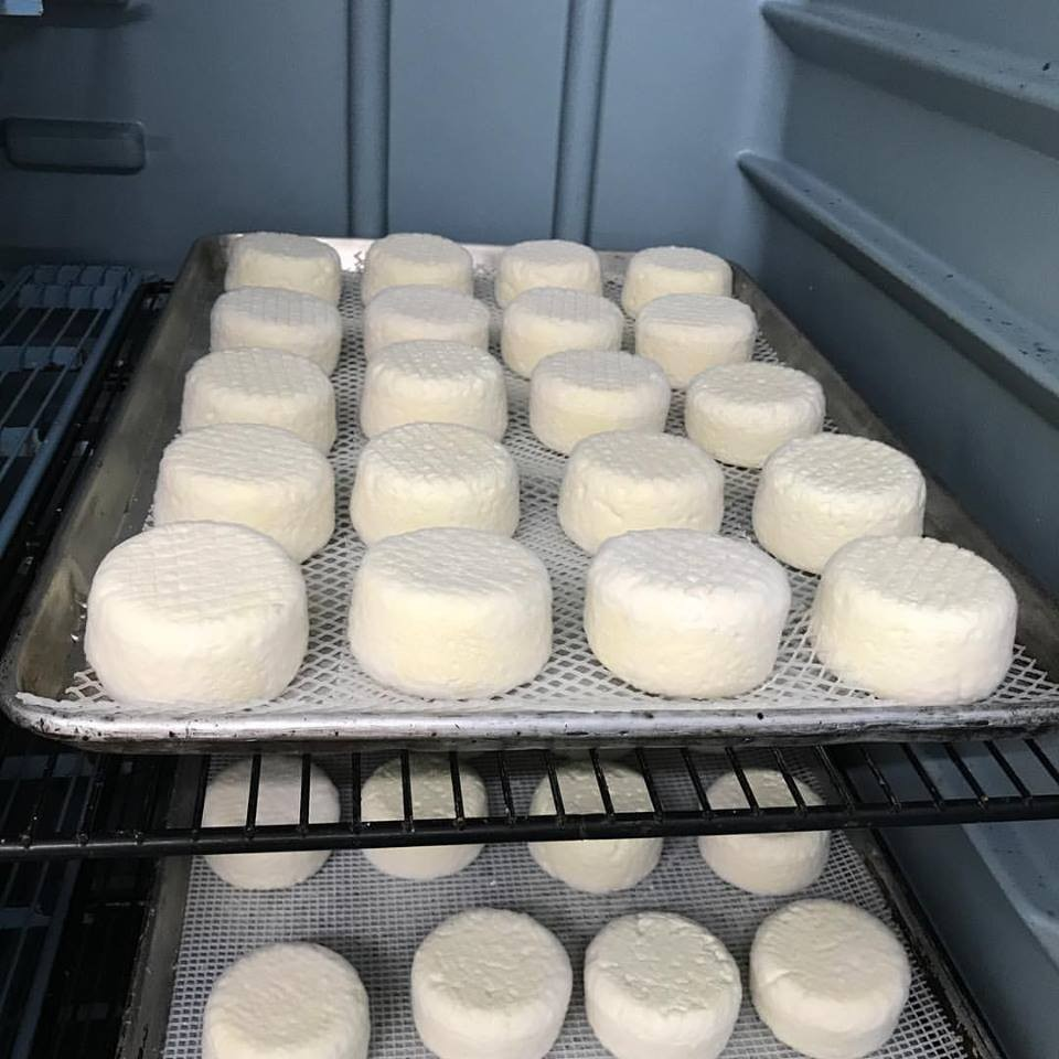 Doe's and Diva's produces incredible, fresh sheep and cow dairy products.