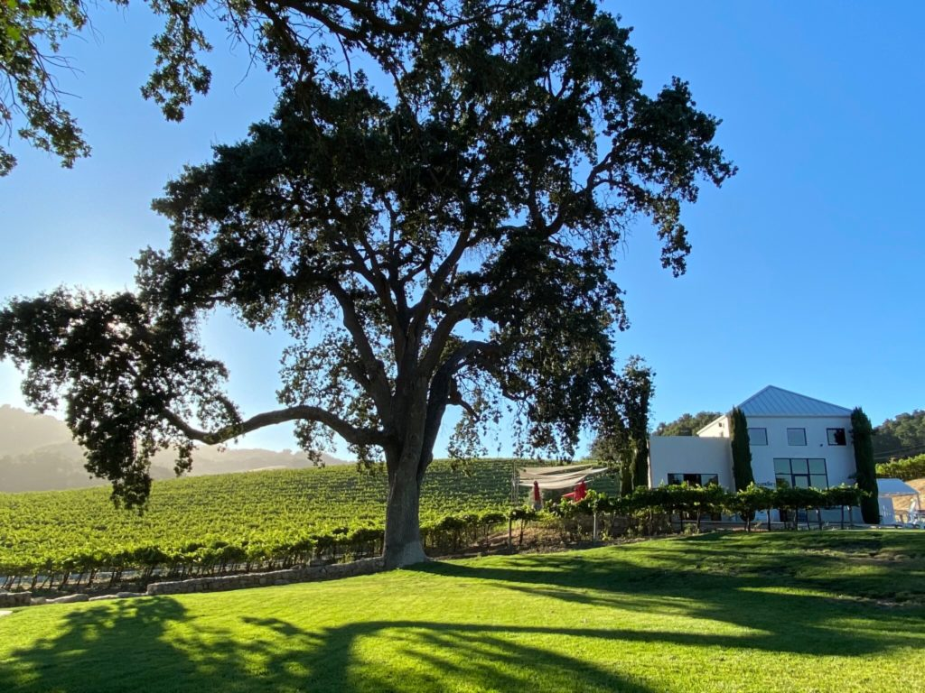 HammerSky Vineyards is an incredible HArvest Hosts location in Paso Robles, California.