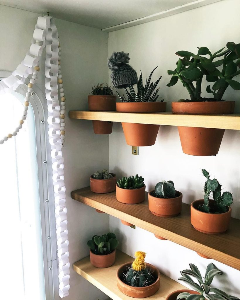 Wall-mount plant shelves are an excellent way to store plants for travel.