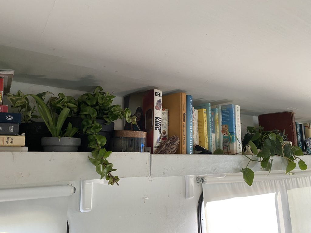 Caring for plants in an RV is not as difficult as it seems.