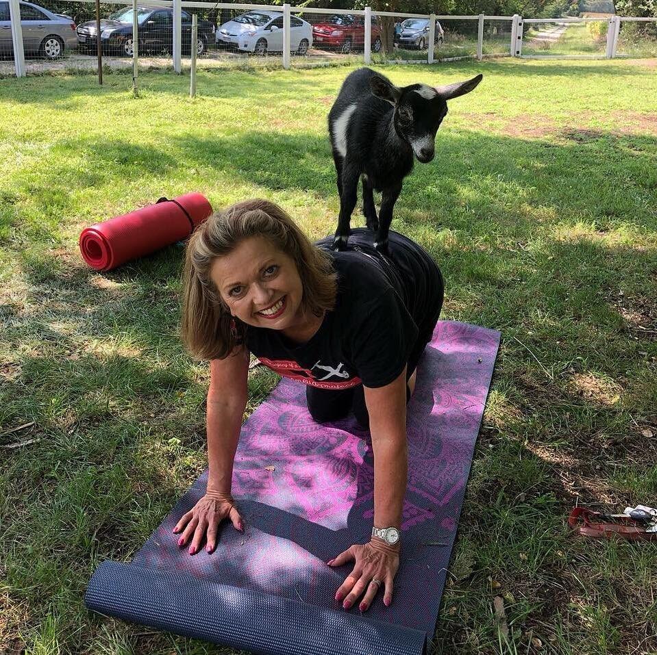 A woman enjoys a goat's presence during goat yoga.