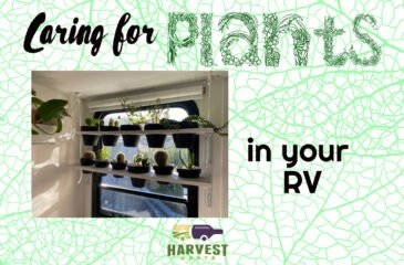 Caring for Plants in an RV