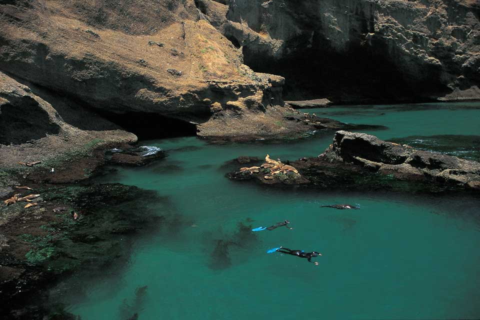 Santa Barbara Island offers lots of opportunities for snorkeling and diving.