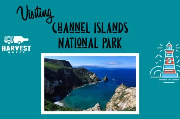 Visiting Channel Islands National Park