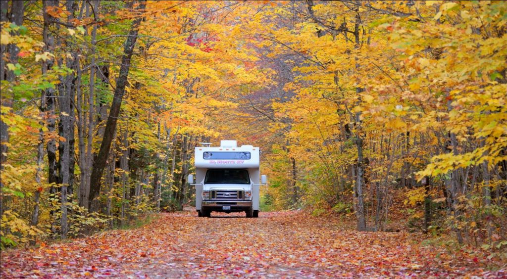 An RV sits in a forest filled trees whose leaves have changed with the autumn season.