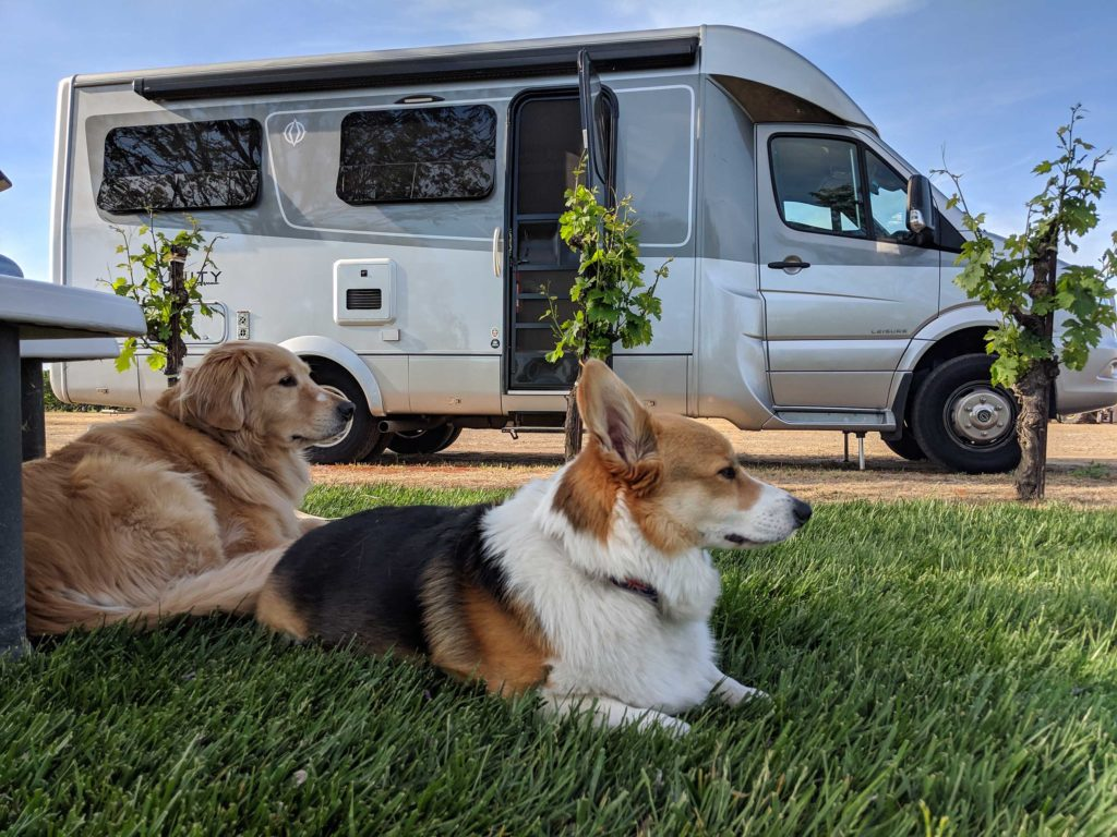 Pet care is another cost of full time RV living.