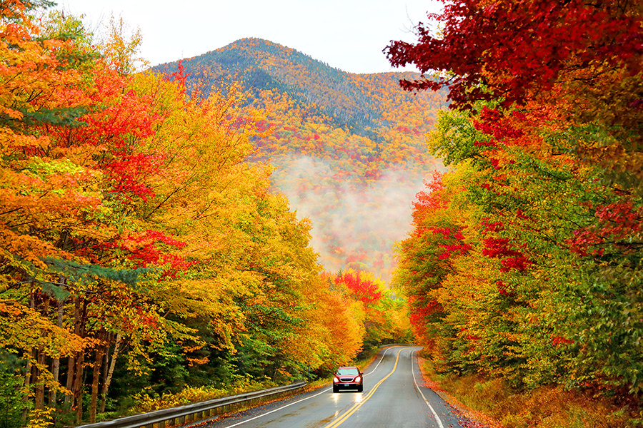 A car drives down a highway lined in gorgeous, colorful trees.