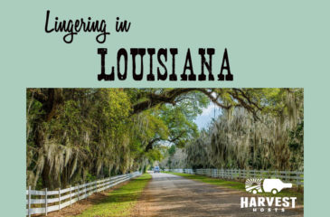 Lingering in Louisiana