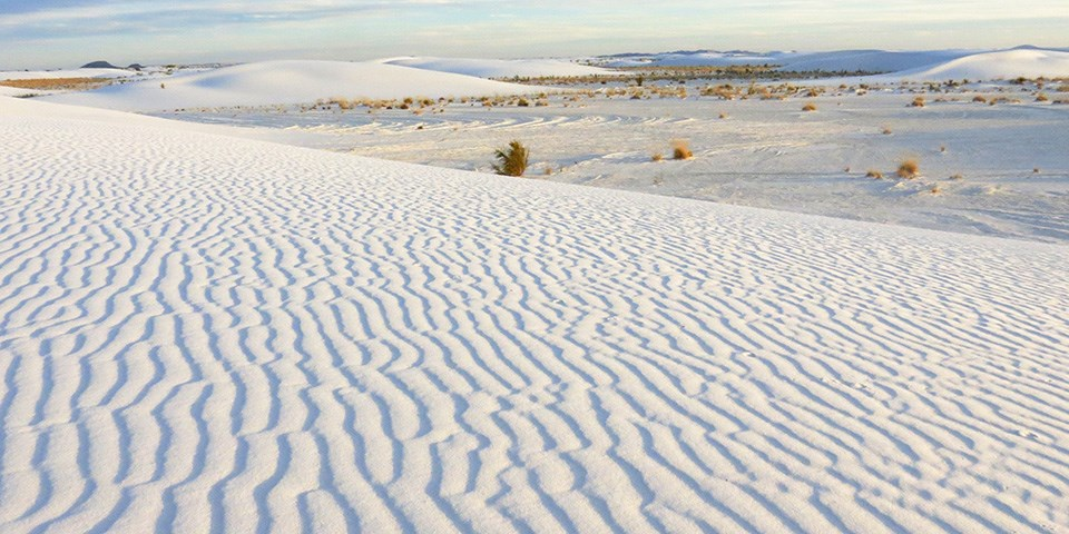 White Sands National Park is found in New Mexico.