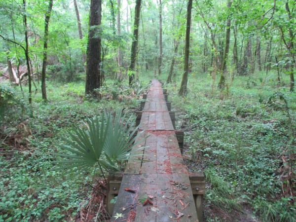 West Texas hiking trail