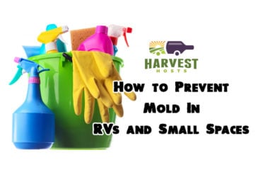 How to Prevent Mold In RVs and Small Spaces