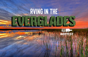 RVing in the Everglades