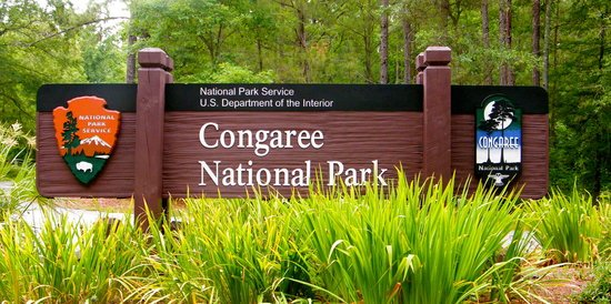 The classic brown entrance sign to Congaree National Park