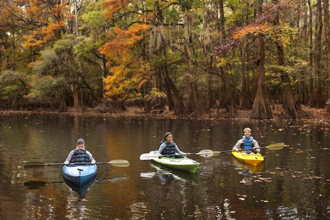 A family of three canoeing in Congaree National Park in the fall