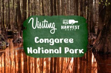Visiting Congaree National Park