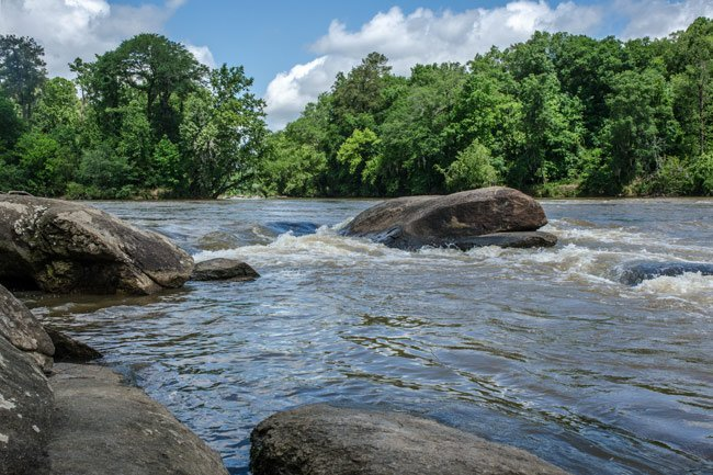 The Congaree River flowing strong in the spring. The water is rushing over rocks.