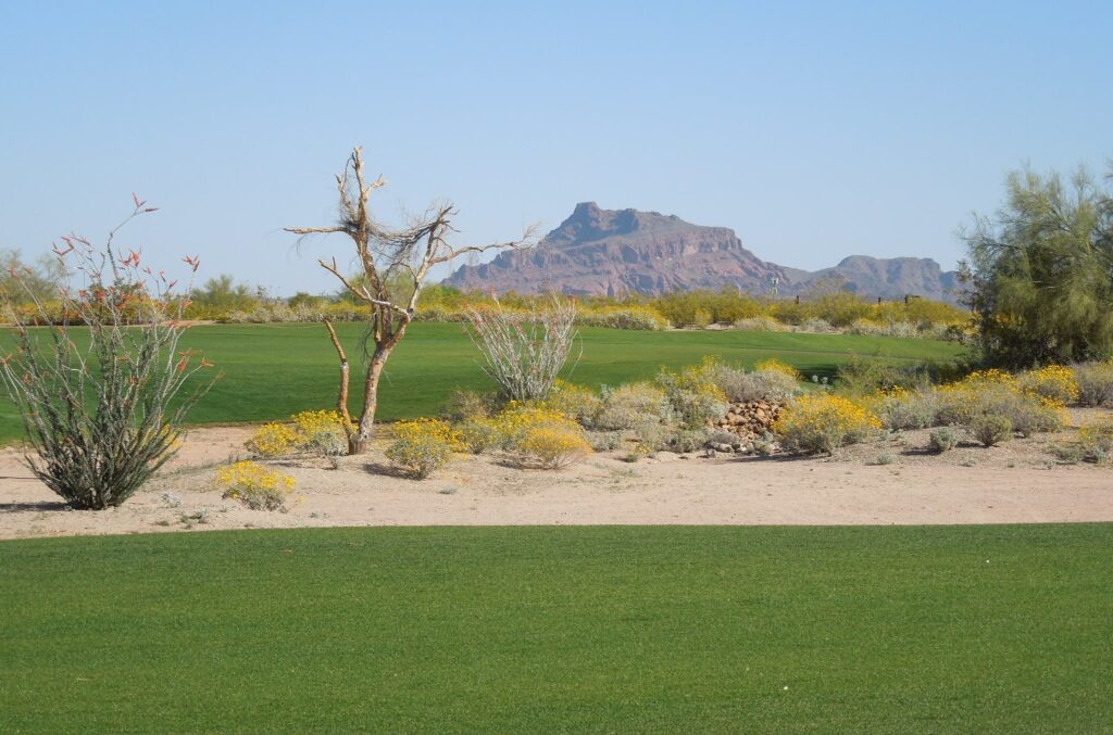 Longbow Golf Club is one of our awesome Harvest Hosts golf locations in Phoenix.