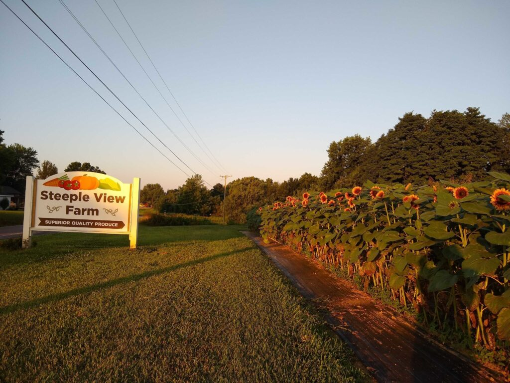 Steeple View Farm is one of our favorite Eastern Kentucky Harvest Hosts locations.